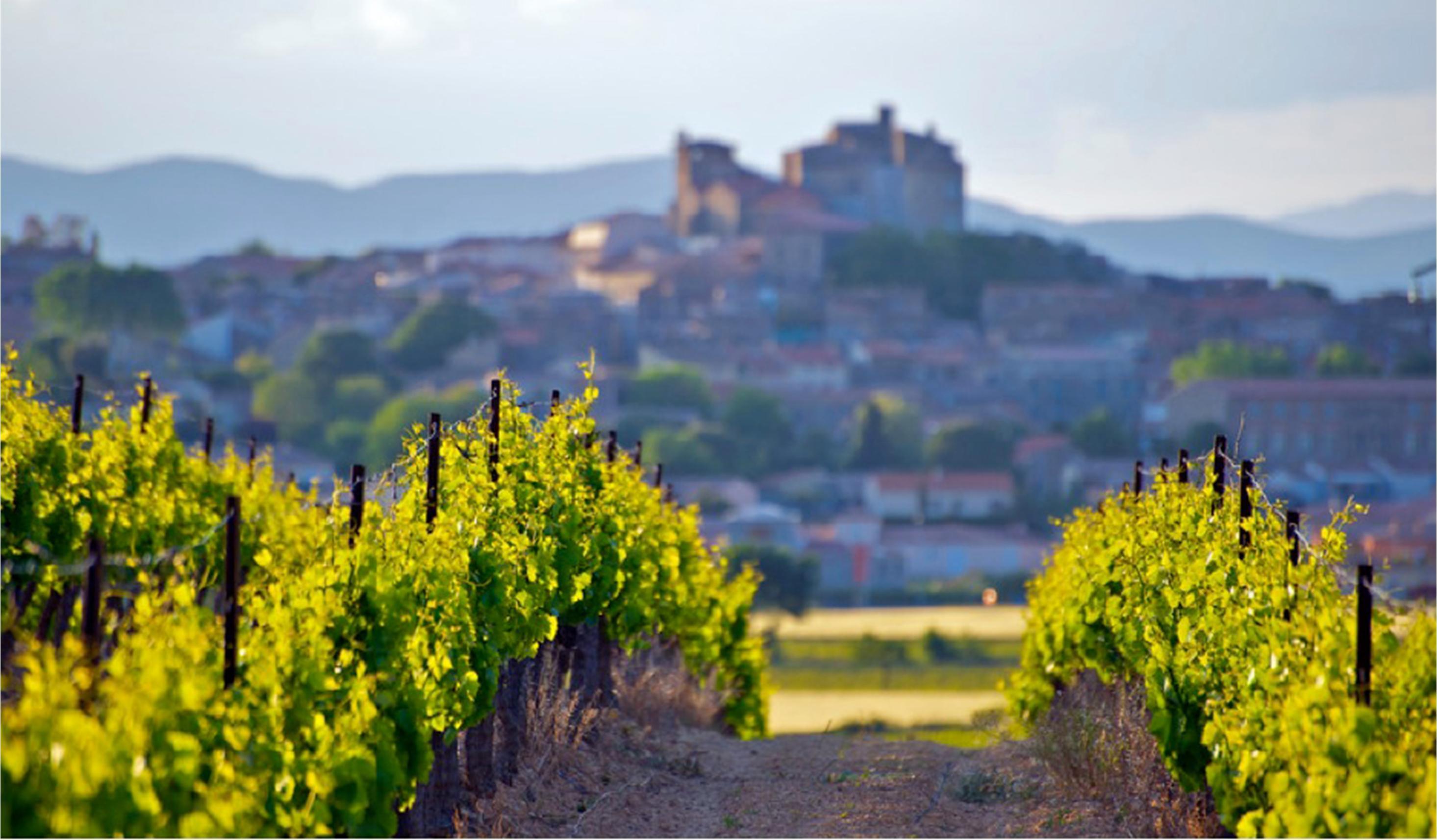 terre d'Oc i Provence
