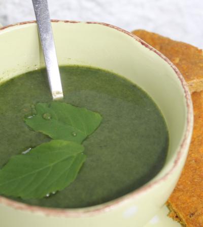 Ferskplukket brennesle forvandles til nydelig, gratis og supersunn suppe