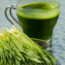 wheatgrass_cup