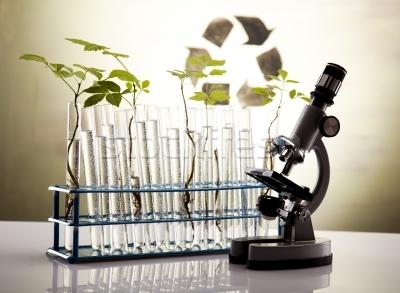Innholdsstoffer i økologisk kosmetikk