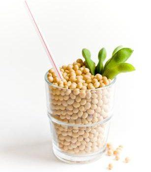 Plantemelk – en miniguide for nybegynnere!